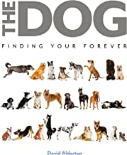 The Dog: Finding Your Forever
