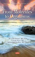 From Molecules to Organisms