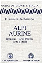 Alpi Aurine. Brennero, Gran Pilastro, Vetta d'Italia