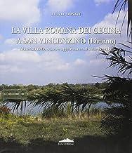 La villa romana dei Cecina a San Vincenzino (Livorno). Materiali sullo scavo e aggiornamenti sulle ricerche