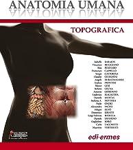 Anatomia umana topografica