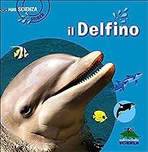 Delfino (Il)
