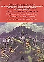 La strafexpedition. Gli altipiani vicentini nella tragedia della grande guerra