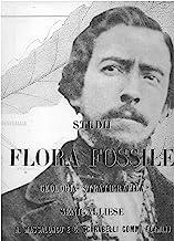Studi sulla flora fossile. Geologia stratigrafica del senigalliese