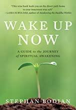 Wake Up Now (English Edition)