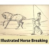 Illustrated Horse Breaking (English Edition)