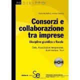 Consorzi e collaborazione tra imprese: Disciplina giuridica e fiscaleGeie, Associazioni temporanee, Joint venture, Trust (Diritto)